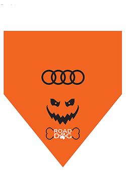 Halloween Pet Collar Bandanna Thumbnail