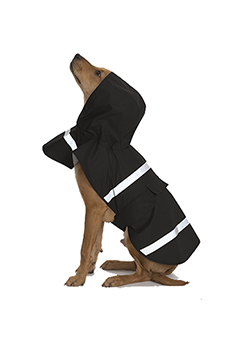 Dog Rain Jacket Thumbnail