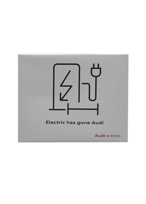 Electric Has Gone Audi Canvas Image